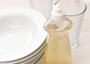 Cách làm nước rửa chén từ Nha đam